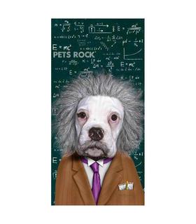 toalla-pets-rock-perro-einstein